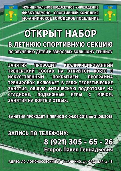 01.05.2018 - Секция б. теннис